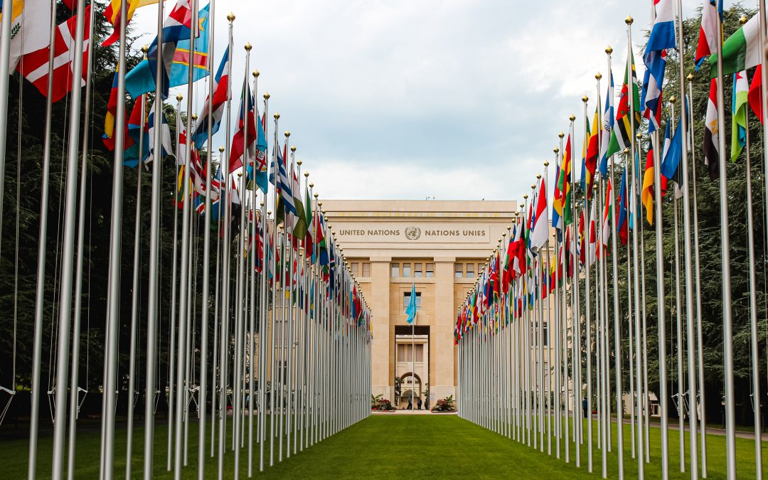 Sustainable Development Goals and The Powerful Impact of Business Partnerships
