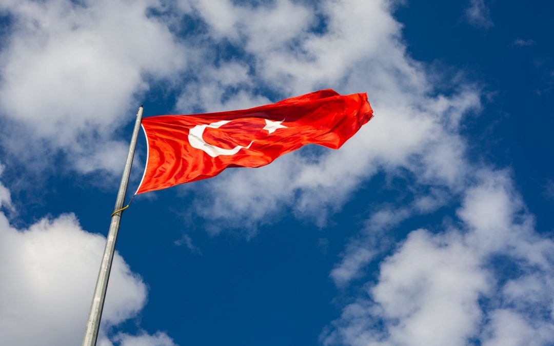 Domestic Violence and the Istanbul Convention