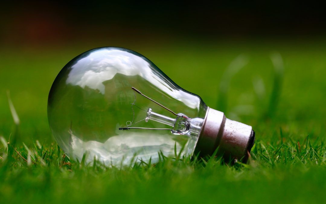 From Consumer to Prosumer: the Shift in the Renewable Energy Supply Chain